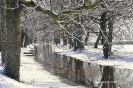 Stawy zimą, fot. J. Preuhs